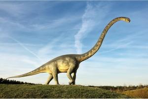 Diplodocus-2123-xl