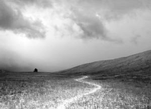 Path A